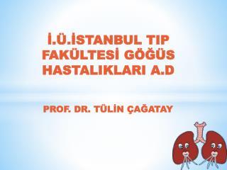 PROF. DR. TÜLİN ÇAĞATAY
