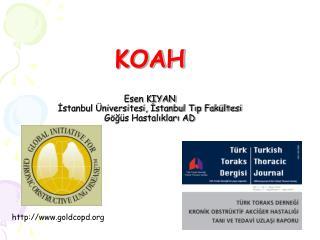 KOAH Esen KIYAN İstanbul Üniversitesi, İstanbul Tıp Fakültesi Göğüs Hastalıkları AD