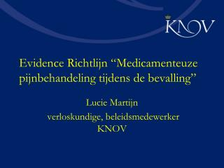 """Evidence Richtlijn """"Medicamenteuze pijnbehandeling tijdens de bevalling"""""""