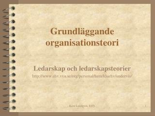 Grundl ggande organisationsteori