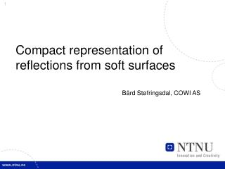 Compact representation of reflections from soft surfaces