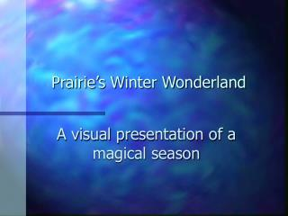 Prairie's Winter Wonderland