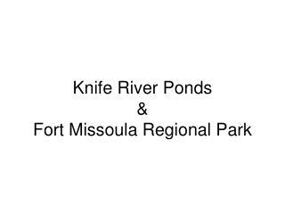Knife River Ponds  &  Fort Missoula Regional Park