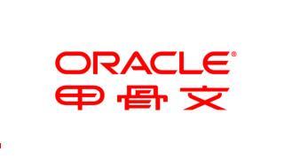 为 Oracle  数据库 优化  Sun ZFS 存储设备