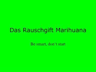 Das Rauschgift Marihuana