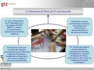 C:2 Elaboraci n de Planes de OT y de Desarrollo