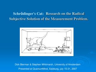 Schr ö dinger's Cat: Research on the Radical Subjective Solution of the Measurement Problem.