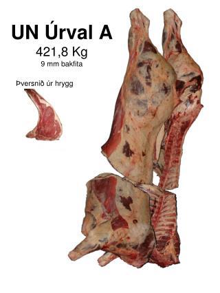 UN Úrval A 421,8 Kg 9 mm bakfita