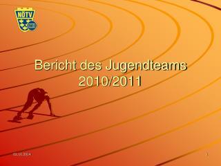 Bericht des Jugendteams 2010/2011