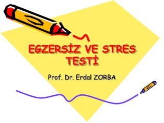 EGZERS?Z VE STRES TEST?