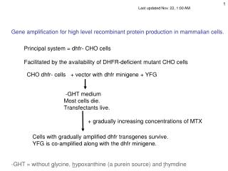 Gene amplification for high level recombinant protein production in mammalian cells.