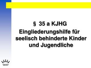 § 35 a KJHG Eingliederungshilfe für seelisch behinderte Kinder und Jugendliche