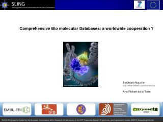 Comprehensive Bio molecular Databases: a worldwide cooperation ?