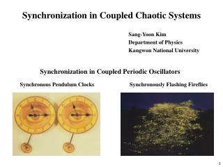 Synchronization in Coupled Chaotic Systems