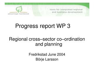Progress report WP 3 Regional cross–sector co–ordination     and planning