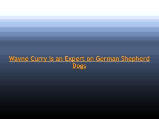 Wayne Curry is an Expert on German Shepherd Dogs