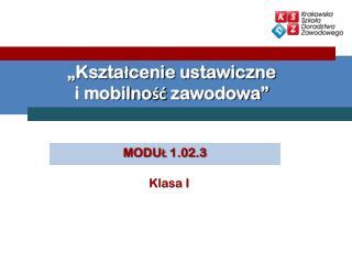 """""""Kształcenie ustawiczne  i mobilność zawodowa"""""""