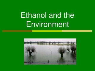 Ethanol and the Environment