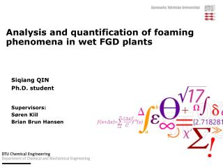 Analysis and quantification of foaming  phenomena in wet FGD plants