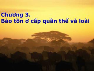 Chương 3.  Bảo tồn ở cấp quần thể và loài