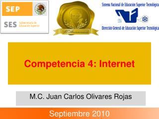Competencia 4: Internet