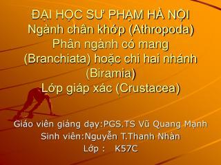 Giáo viên giảng dạy:PGS.TS Vũ Quang Mạnh Sinh viên:Nguyễn T.Thanh Nhàn Lớp :   K57C