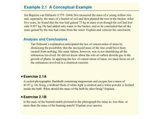 Example 2.1  A Conceptual Example