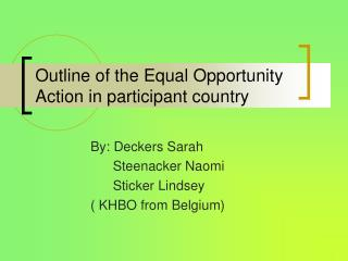 Outline of the Equal Opportunity Action in participant country