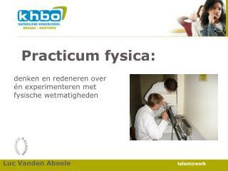 Practicum fysica: