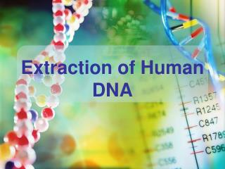Extraction of Human DNA