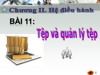 Bài 11: