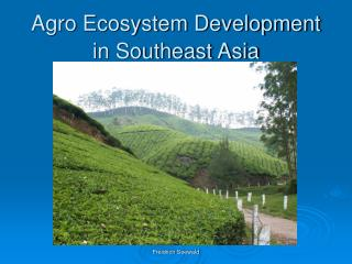 Agro Ecosystem Development in Southeast Asia