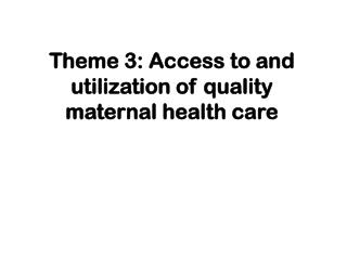 Theme 3: Access to and utilization of quality maternal health care