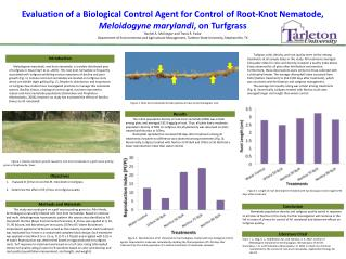 Evaluation of a Biological Control Agent for Control of Root-Knot Nematode, Meloidogyne marylandi, on Turfgrass Rachel A