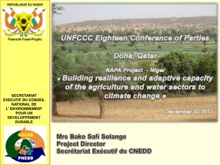 UNFCCC Eighteen Conference of Parties Doha, Qatar NAPA Project  - Niger
