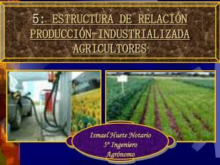 5 :  ESTRUCTURA DE RELACIÓN PRODUCCIÓN-INDUSTRIALIZADA AGRICULTORES