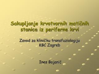 Ines Bojanić