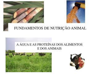 FUNDAMENTOS DE NUTRIÇÃO ANIMAL