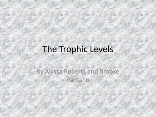 The Trophic Levels
