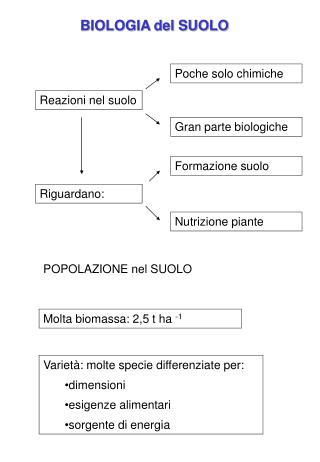 BIOLOGIA del SUOLO