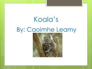Koala's By: Caoimhe Leamy
