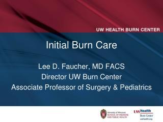 Initial Burn Care
