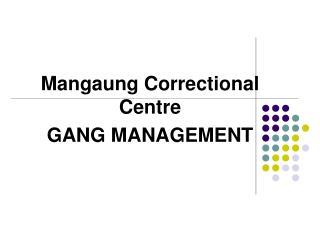Mangaung Correctional Centre GANG MANAGEMENT