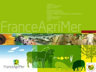 Prix et marges dans la filière viande bovine Objectifs et méthodes, 1 ers  résultats