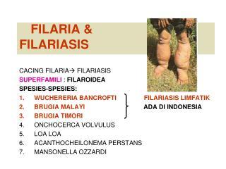 FILARIA  &  FILARIASIS