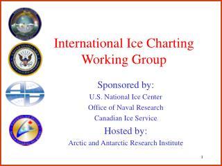International Ice Charting Working Group