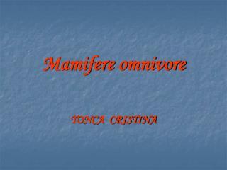 Mamifere  omnivore