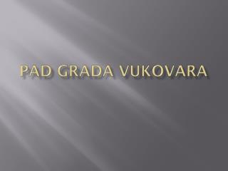 PAD GRADA VUKOVARA