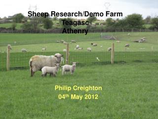 Sheep Research/Demo Farm Teagasc Athenry
