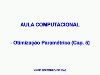 AULA COMPUTACIONAL  Otimização Paramétrica (Cap. 5)